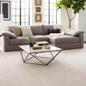 Living room Carpeting | Jack's Tile And Carpet