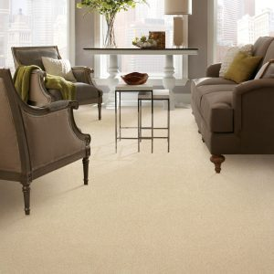 Carpeting Flooring of Refined Moment | Jack's Tile And Carpet